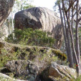 Mount Lawson Summit Loop Nature Trail
