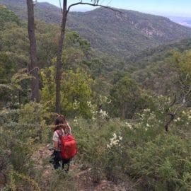 Mt Samaria walk