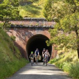 Cheviot Tunnel Murrindindi Yea Summer