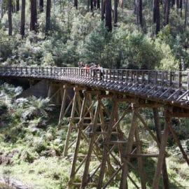 Rubicon Valley Historic Area Trestle Bridge