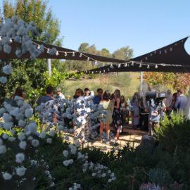 Weddings at amongst the sticks