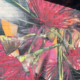 Street Art Benalla