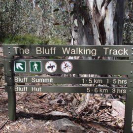 The Bluff Walking Track