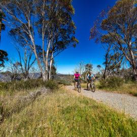 Brabraulung Hotham to Dinner Plain mountain bike trail