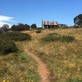 Craigs-Hut-Walking-Track.1600x900