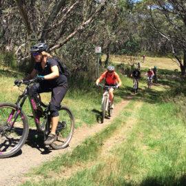 Falls Creek Mountain Bike Park Jumpstart Intermediate XC