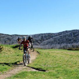 Falls Creek Mountain Bike Park Short Circuit Beginner XC