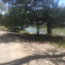 Willows Reserve Walk