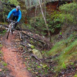 MTB Yackandandah Mountain Bike Park Ride High Country