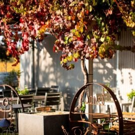 Jones Winery & Vineyard