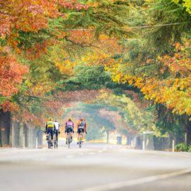 Road riding in Autumn