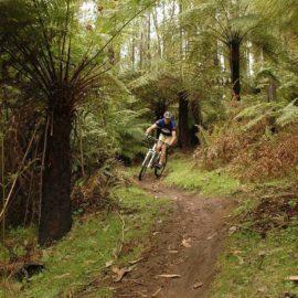 Buxton Mountain Bike Path