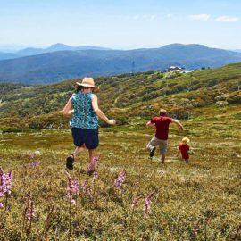 Summit Nature Walk