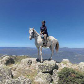 The Rock - Mt Stirling False Summit