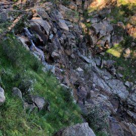 Pine Gully Waterfall
