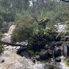 Murrindindi Cascades