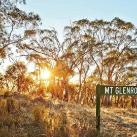 Mt Glenrowan Sign