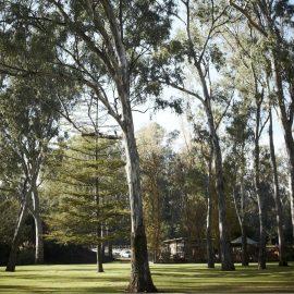 Merriwa Park