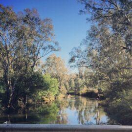 River Road Reserve