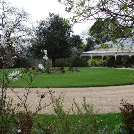 Delatite garden
