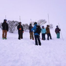 Skiers walking in snow with probes