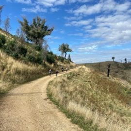 Walking in the King Valley