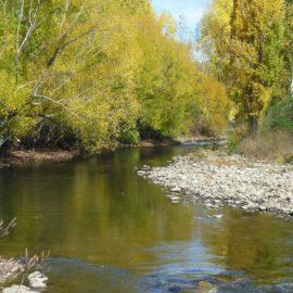 River walk Mount Beauty