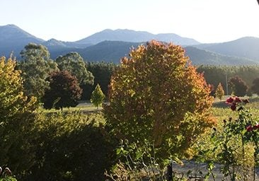 Wine regions of the High Country