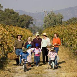 Glenrowan Wine Region