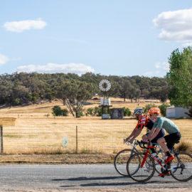 Road cyclists riding past farmland