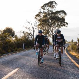Road cyclists riding up Mount Buffalo