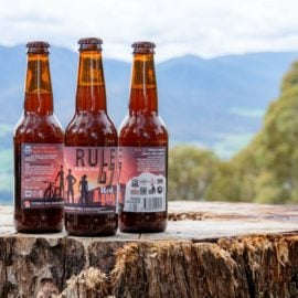3 bottles of the Rule 47 beer with a mountain backdrop